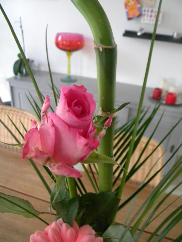 rose 081212
